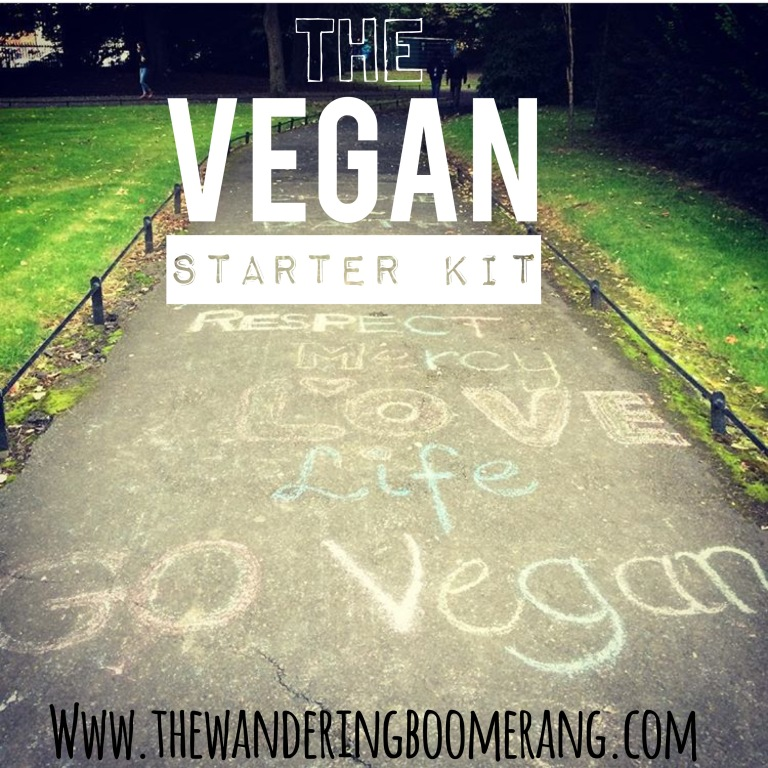 the vegan starter kit - www.thewanderingboomerang.com