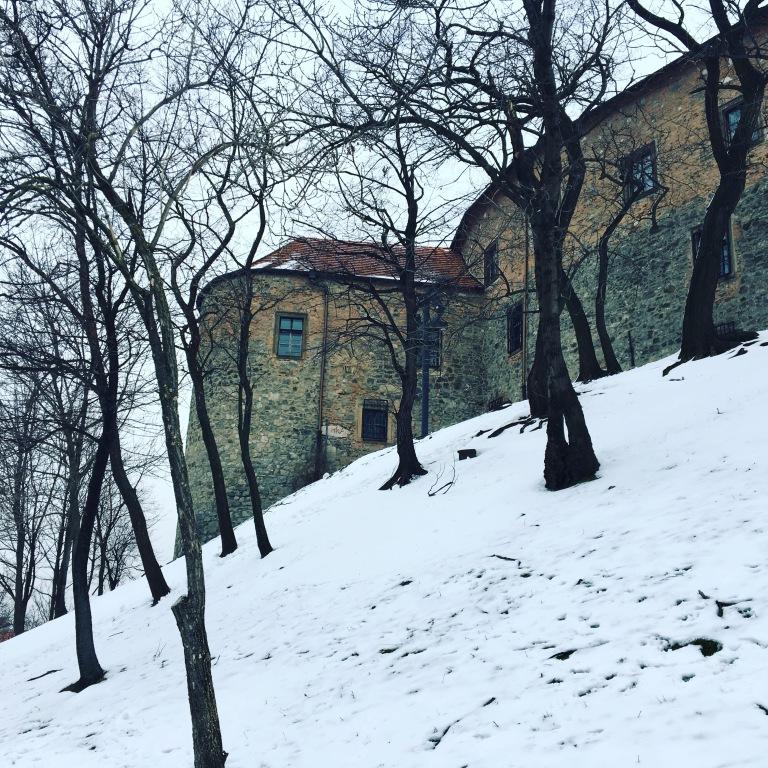 vegan in bratislava - www.thewanderingboomerang.com